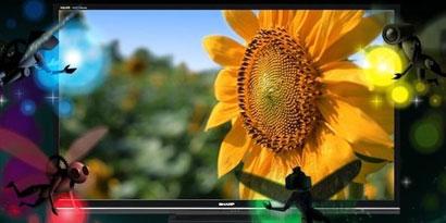 Imagem de Sharp apresenta monitor de 32 polegadas com resolução 4K no site TecMundo