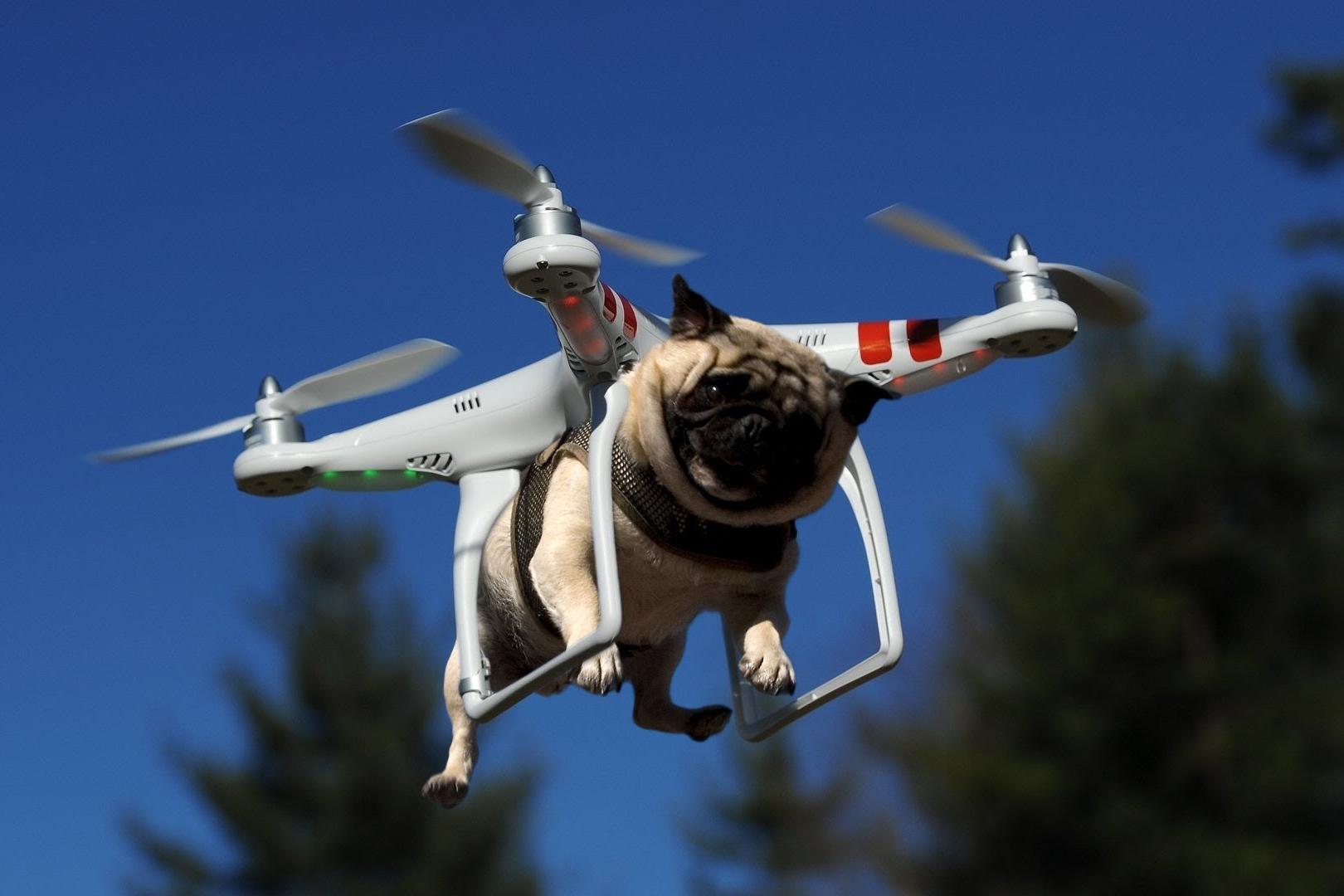 Imagem de 10 coisas malucas que as pessoas fizeram com seus drones no tecmundo