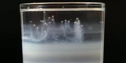 Imagem de Como ver o DNA da cebola [Iberê] no site TecMundo