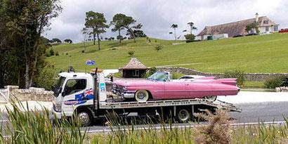 Imagem de Dono do Megaupload tinha coleção de carros de luxo com placas engraçadas no site TecMundo