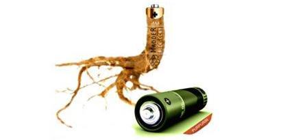 Imagem de Raiz de planta é usada para criar bateria ecológica no site TecMundo