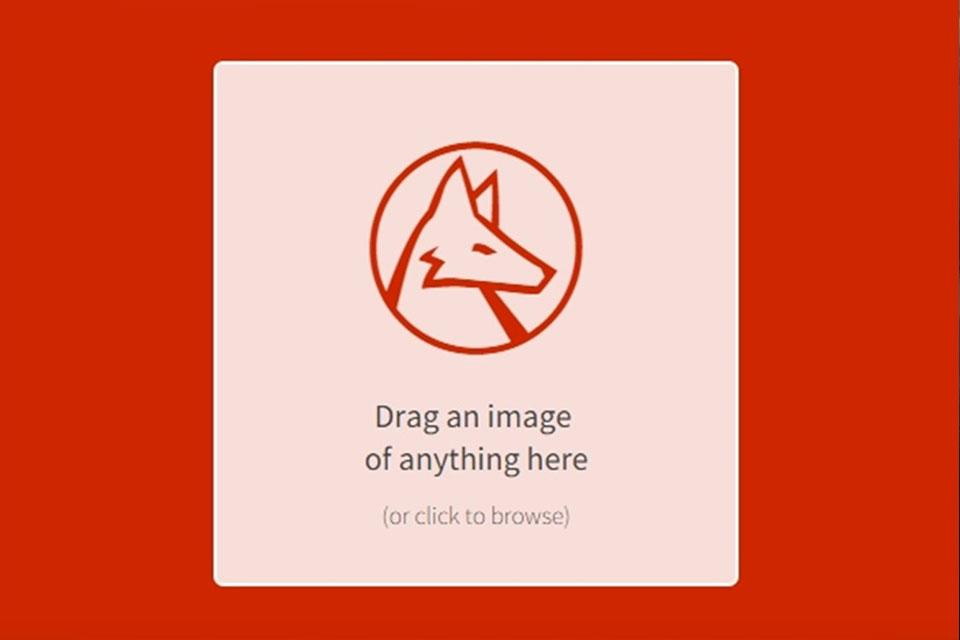 Imagem de Site consegue identificar praticamente qualquer imagem que você quiser no tecmundo
