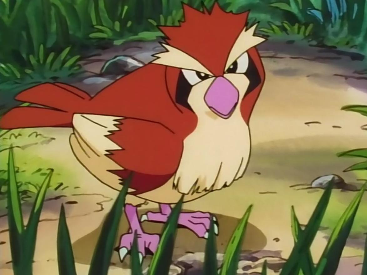 Imagem de Qual a melhor forma de upar o seu nível em Pokémon GO? Pegue muitos Pidgeys no tecmundo
