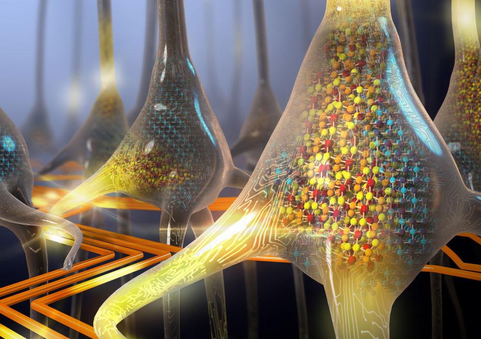 Imagem de IBM desenvolve neurônios que pensam 'sozinhos' no tecmundo