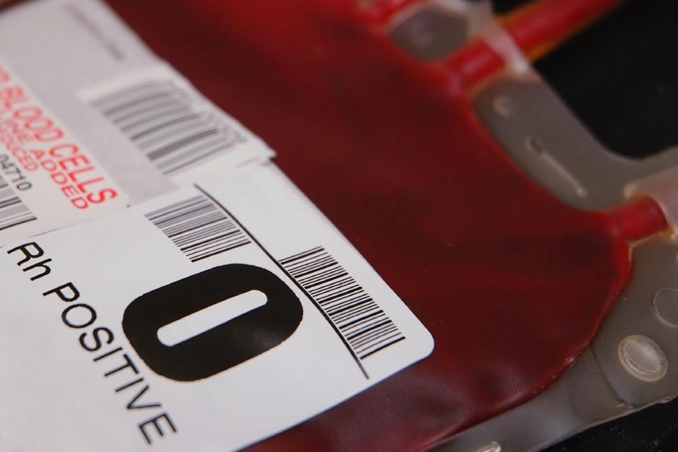 Imagem de Já é possível produzir sangue artificial em larga escala no tecmundo