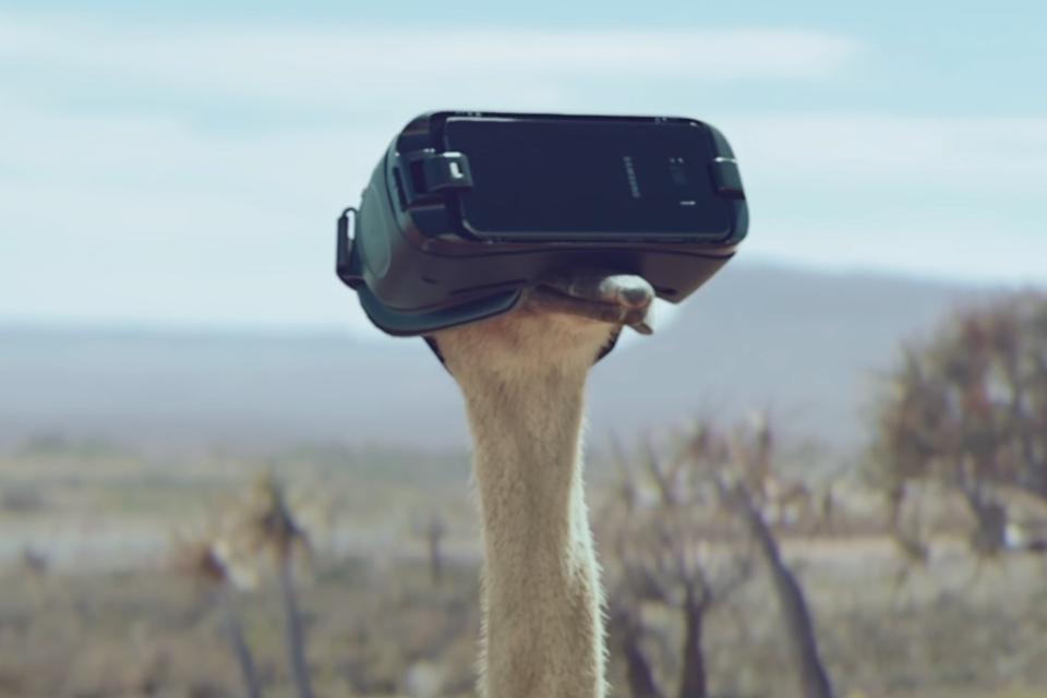 Imagem de Avestruz aprende a voar em vídeo do novo Gear VR da Samsung no tecmundo
