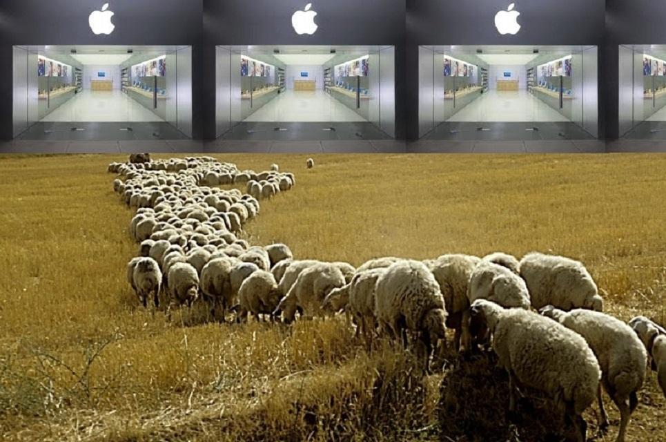 Imagem de Você é fã da Apple? Segundo um dicionário, você faz parte do 'povo-gado' no tecmundo
