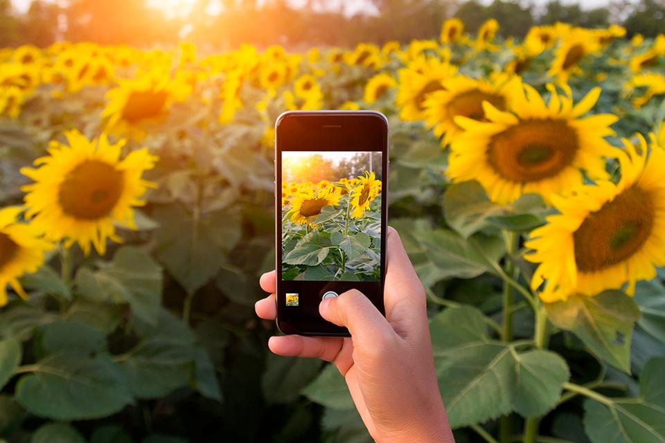 Imagem de Tire fotos incríveis usando apenas a câmera do iPhone no tecmundo