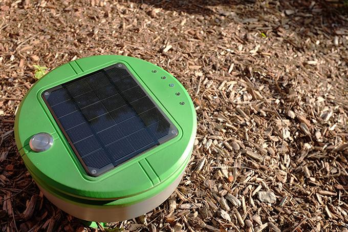 célular solar