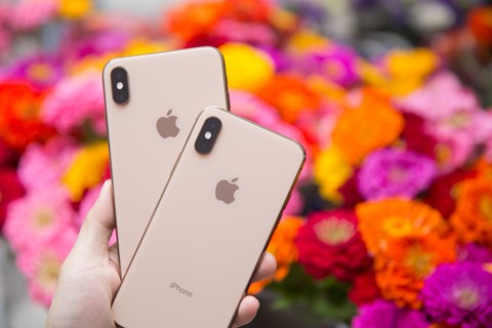 Imagem de O que a imprensa internacional está achando dos novos iPhones Xs e Xs Max no tecmundo