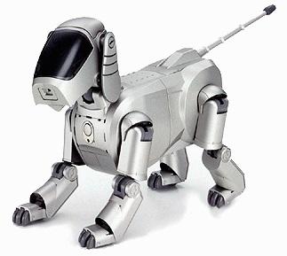 Um robô.