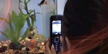 Imagem de Tecnologia RFID será utilizada para fornecer publicidade personalizada em celulares no site TecMundo